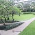 halaman apartemen essence darmawangsa