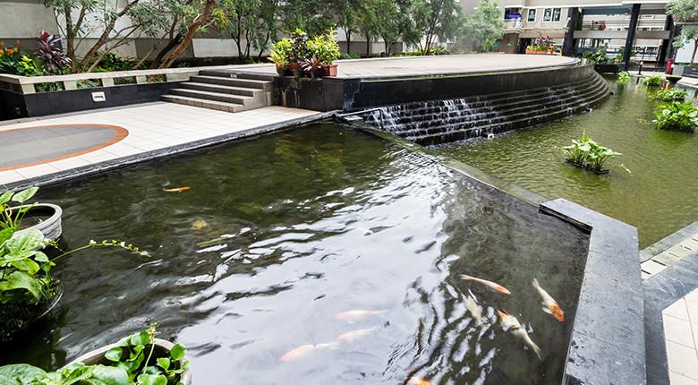 kolam ikan apartemen sudirman park