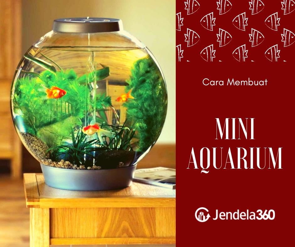 6 Cara Membuat Aquarium Mini Siapapun Bisa